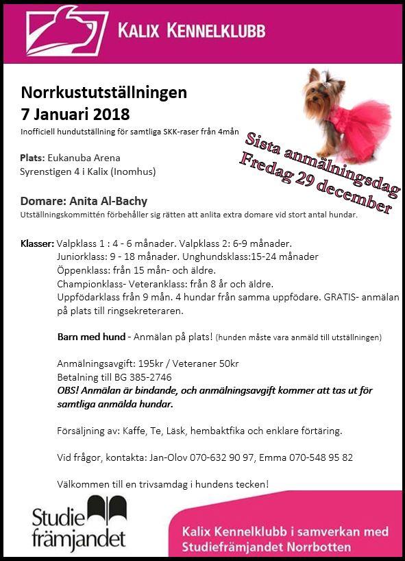 Norrkustuts hel 180107