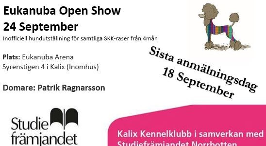 Eukanuba Open Show 24 September