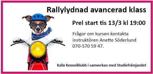 thumbnail_rally LITEN