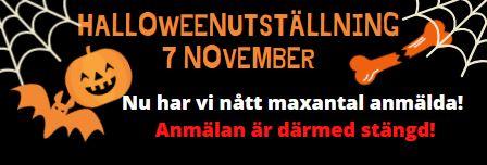 Anmälan till Halloween utställningen STÄNG!